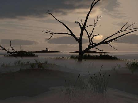 mire: Dawning on marsh, mist on swamp, illustration Stock Photo
