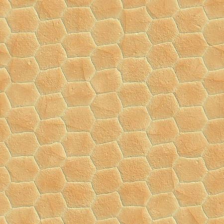 duplication: The texture snake skin,  suits for duplication of the background, illustration