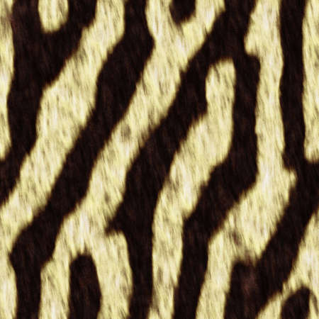 fell: The texture zebra fell,  suits for duplication of the background, illustration Stock Photo