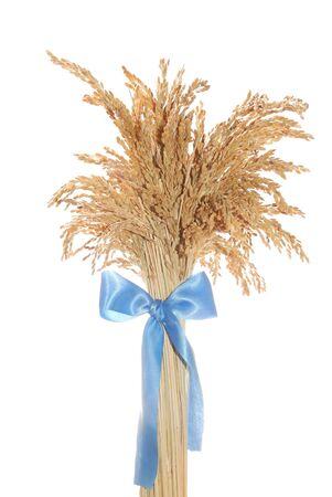 sheaf: rice sheaf with bow