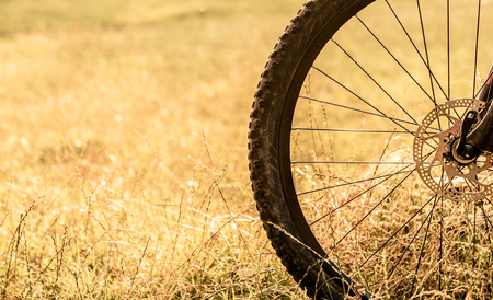 bicycle wheel in the field closeup photo