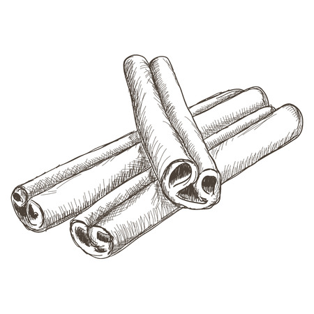 Cinnamon sticks. Hand drawn sketch Stok Fotoğraf - 75942904
