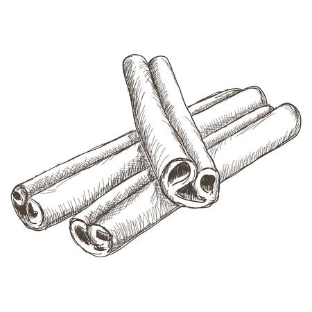 Zimtstangen. Hand gezeichnete Skizze Standard-Bild - 75942904