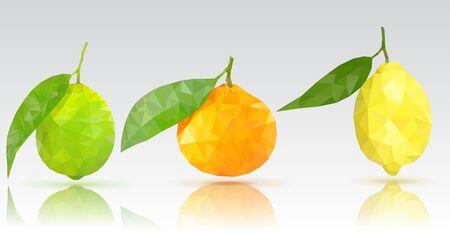 Fruits like lime, lemon and clementine icon. Illustration