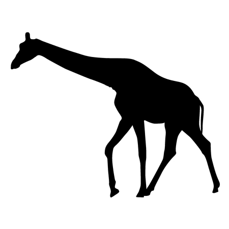 Black silhouette of a giraffe on a white background