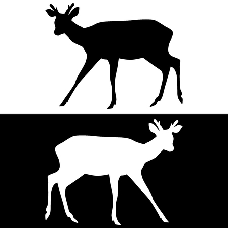 Sika deer with horns. Black and white silhouettes Illustration