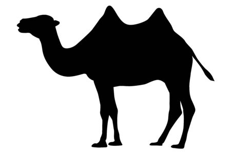 Black silhouette of a camel icon