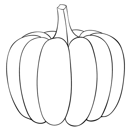 Pumpkin Outline Doodle Vector Illustration Isolated On White