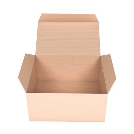 Box. Flat open paper carton. 3d rendering illustration isolated