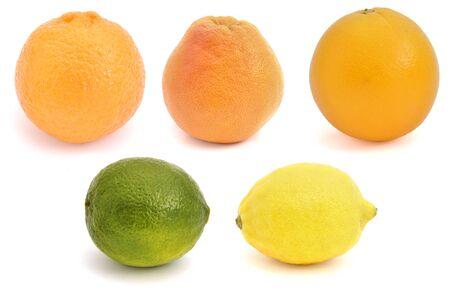 Citrus fruits set
