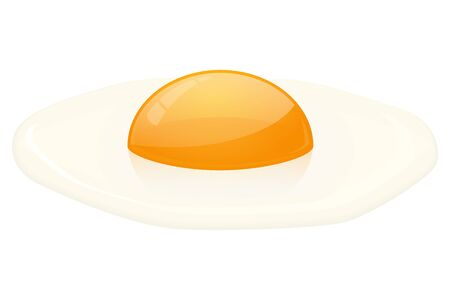 Raw broken egg. Egg yolk and egg white. Vector 3d illustration isolated on white background