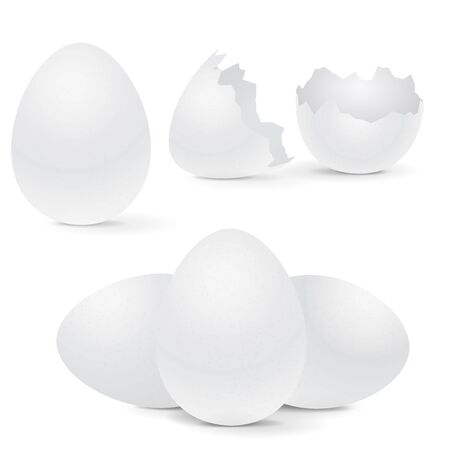 White chicken eggs, whole and broken