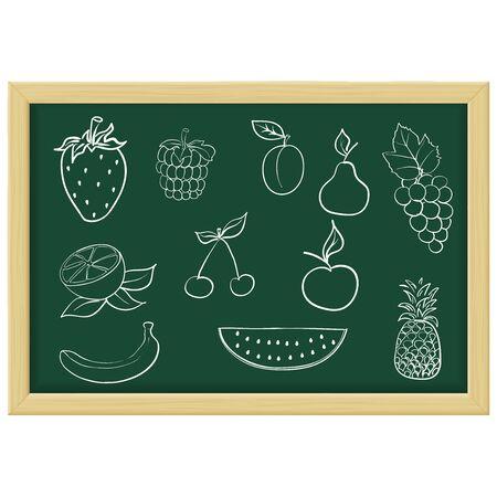 Fruits and berries. Chalk sketch on green blackboard. Vector illustration