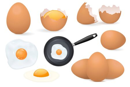 Chicken eggs. Raw and fried eggs, whole and broken shell. Vector 3d illustration isolated on white background