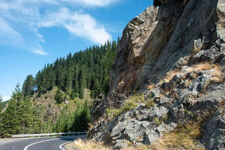 Serpentine road in the mountains. Summer sunny landscape with tall pines and rocks.