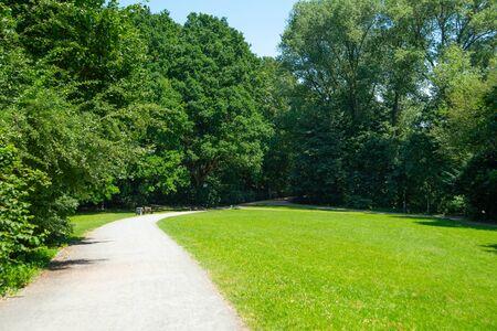Park landscape. Summer green meadow with long lane. Foto de archivo