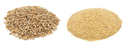 Wheat piles, whole grains and cereal isolated on white background