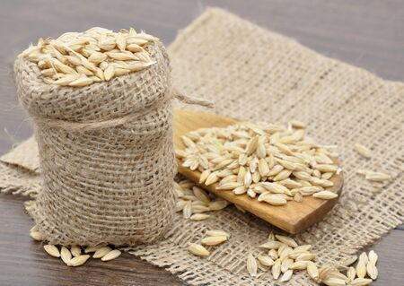 Barley in a cloth sack with wooden spoon. Basic food