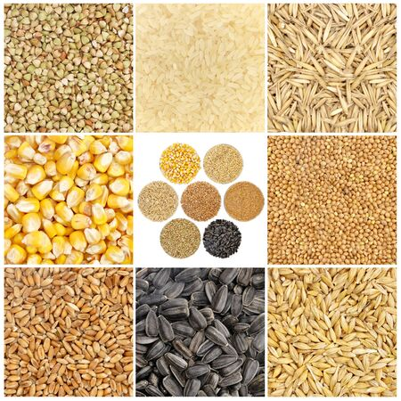 Cereals and basic food staple isolated on white background Foto de archivo - 150229336