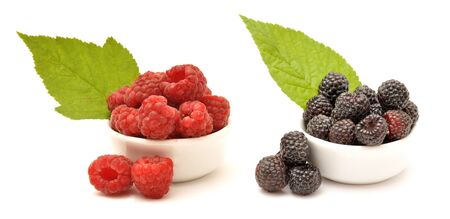 Raspberry and blackberry in white bowls with green leaf Foto de archivo - 150233102
