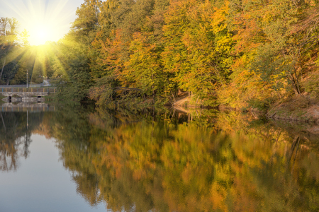 algonquin park: Autumn trees are reflected in the lake