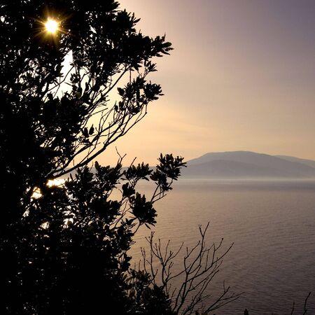 skiathos: The sun sets behind some trees in Skiathos, Greece. Stock Photo