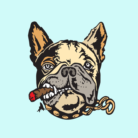 Cartoon french bulldog with cigar vector illustration.