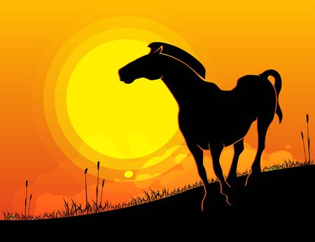 Silhouette of a horse on sunset background, flat landscape background, vector illustration.