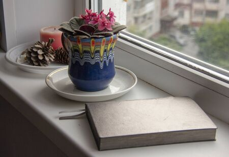 flower violet in a pot, a carafe with water and a diary for planning the day on the windowsill.