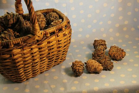 pine cones in a wicker basket on a blue background.