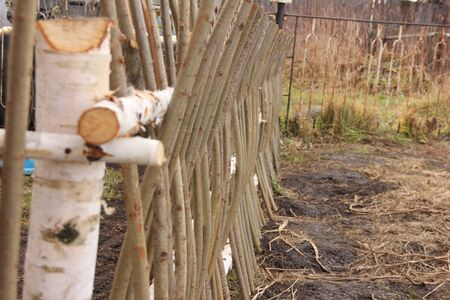 Willow weaving as a low barrier or garden fence in the countryside.