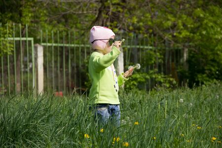 Little girl in a cap collects yellow dandelions in a clearing.