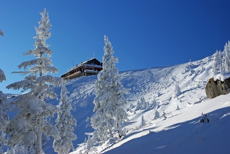 Winter at chalet Dochia in Ceahlau mountains photo