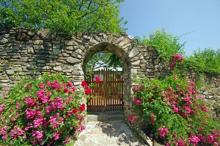 monasteri: Antico muro con fiori (Monastero di Humor in Moldavia)