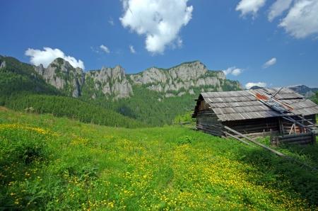 sheepfold: Old wooden sheepfold on a mountain Editorial