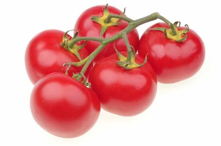 Ripe red tomato vine on a white background Stock Photo - 20694826