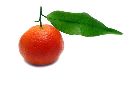 A fresh clementine isolated on a white background photo