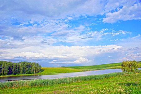 Beautiful summer landscape  meadow, lake and forest  photo