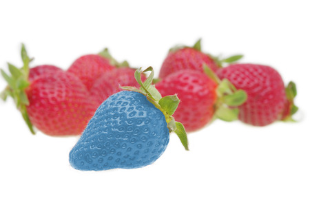 Different than the rest, modified food concept - genetically modified strawberry  photo