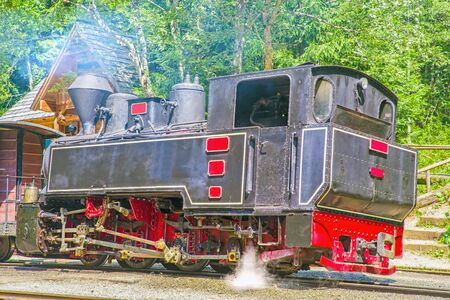 Aged steam engine locomotive in the forest