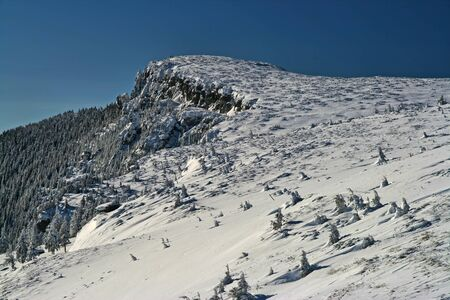 Snow covered mountain summit and trees in a sunny day in Romanian Carpathians 스톡 콘텐츠