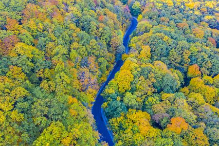Fall forest road, aerial view of autumn trees and road Banque d'images