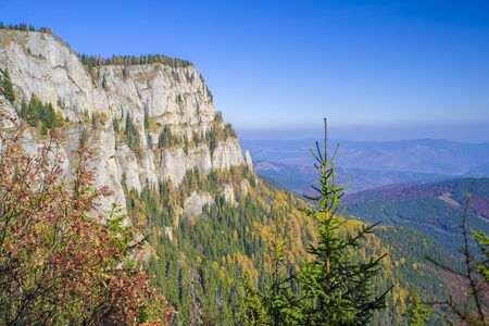 Aerial view of autumn forest and mountain rock in Romanian Carpathians. 스톡 콘텐츠