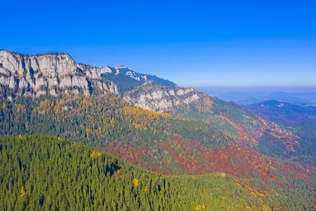 Beautiful mountain forest in Romanian Carpathians, autumn landscape with blue sky