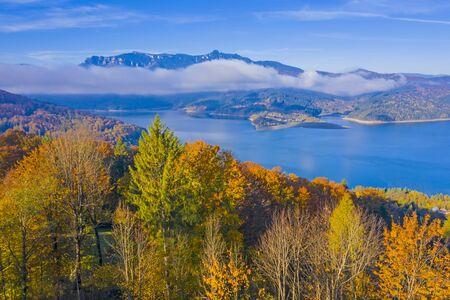 Autumn forest trees and mist cloud over the lake, Romanian Carpathians scene, Bicaz Lake 스톡 콘텐츠