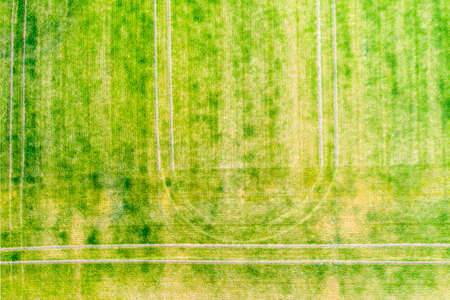 Above view of tractor traces over green field during springtime