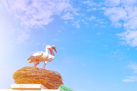 Statues of two storks. Two mature black and white storks with red beaks sitting on the top of a stork nest located on the chimney of a builsing and feeidn their babies with clouds over their heads.