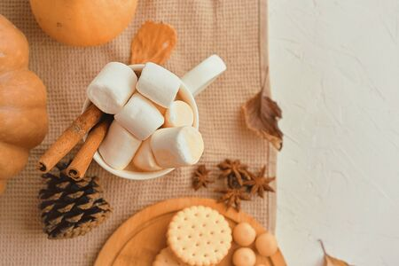 Pumpkin With Cups Of Coffee. Autumn still life from pumpkin, pine cones, mug of cocoa, coffee or hot chocolate with marshmallow on warm plaid with garland. Concept of cozy winter home environment