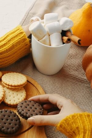 Woman in a warm knitted sweater drinks cocoa with milk and chocolate in a mug with cookies, sitting next to pumpkins. Hot drink in a cup. Autumn season. Warm homely atmosphere. Cozy house