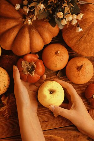 A bunch of pumpkins and apples. Thanksgiving dinner. Autumn fruit with plate and cutlery. Thanksgiving autumn background 版權商用圖片